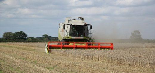 buhalterinė apskaita ūkininkams