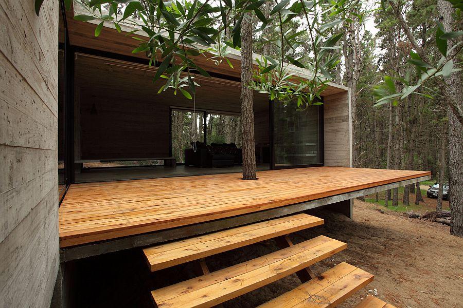 Geriausia medienos apsauga